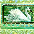 Swan_atc